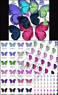 Altered Butterfly Wings Collection