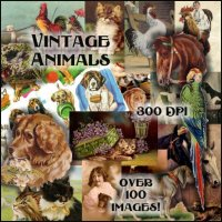 Vintage Animals Collection